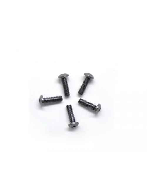 viti in titanio 3x10mm testa tonda (5)